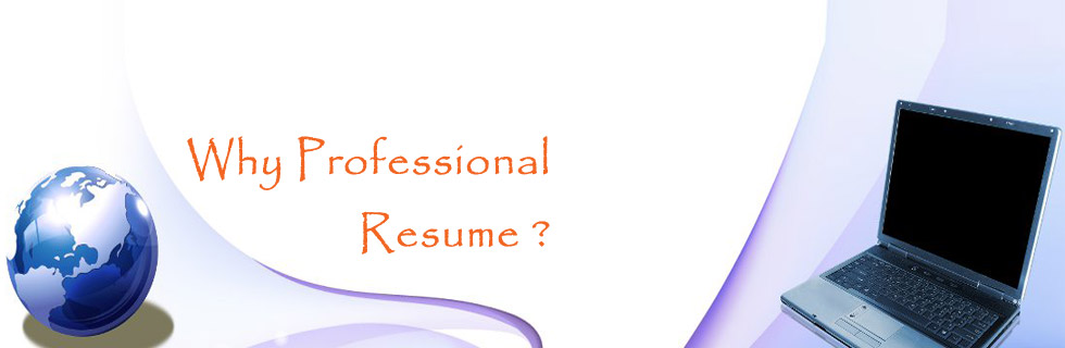 Why Professional Resume